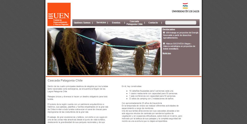 UEN - Unidad de Emprendimiento y Nuevos Negocios