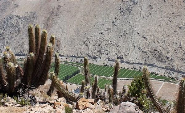 Cabañas en Paihuano